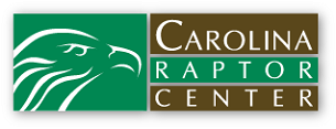 Carolina-Raptor-Center